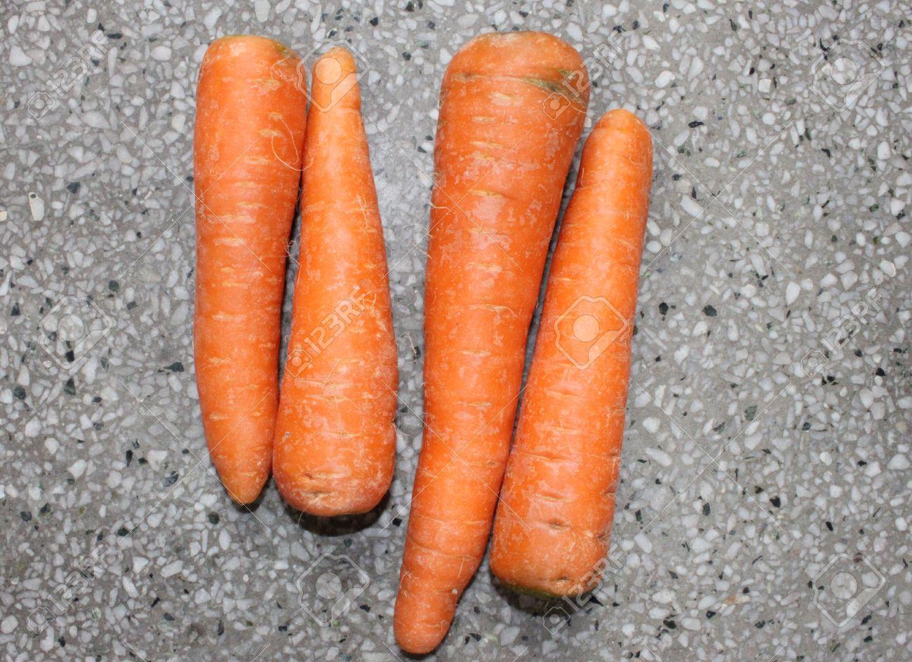 Golden Carrot, Daucus carota, Gajjar in India, conical fleshy