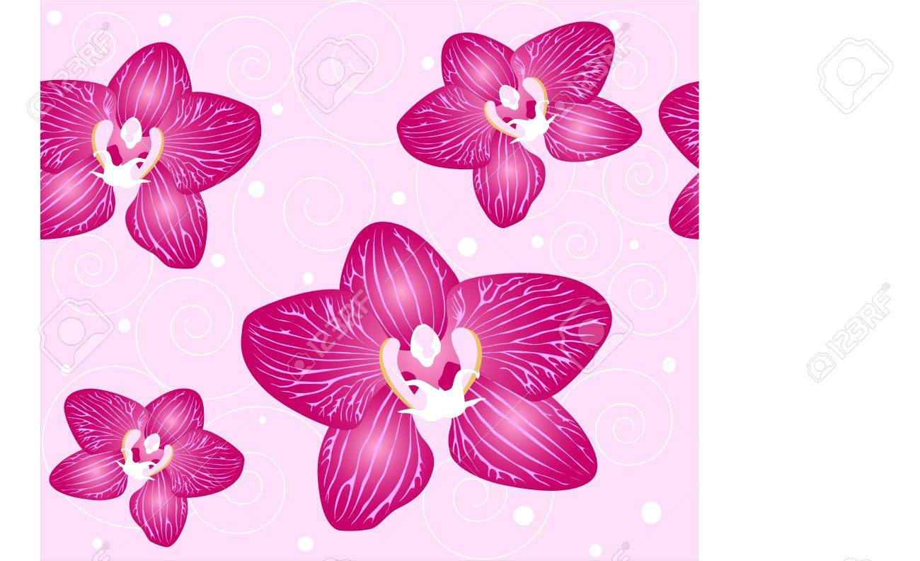 seamless background Orchid flowers on the pink background Stock Vector - 14581150