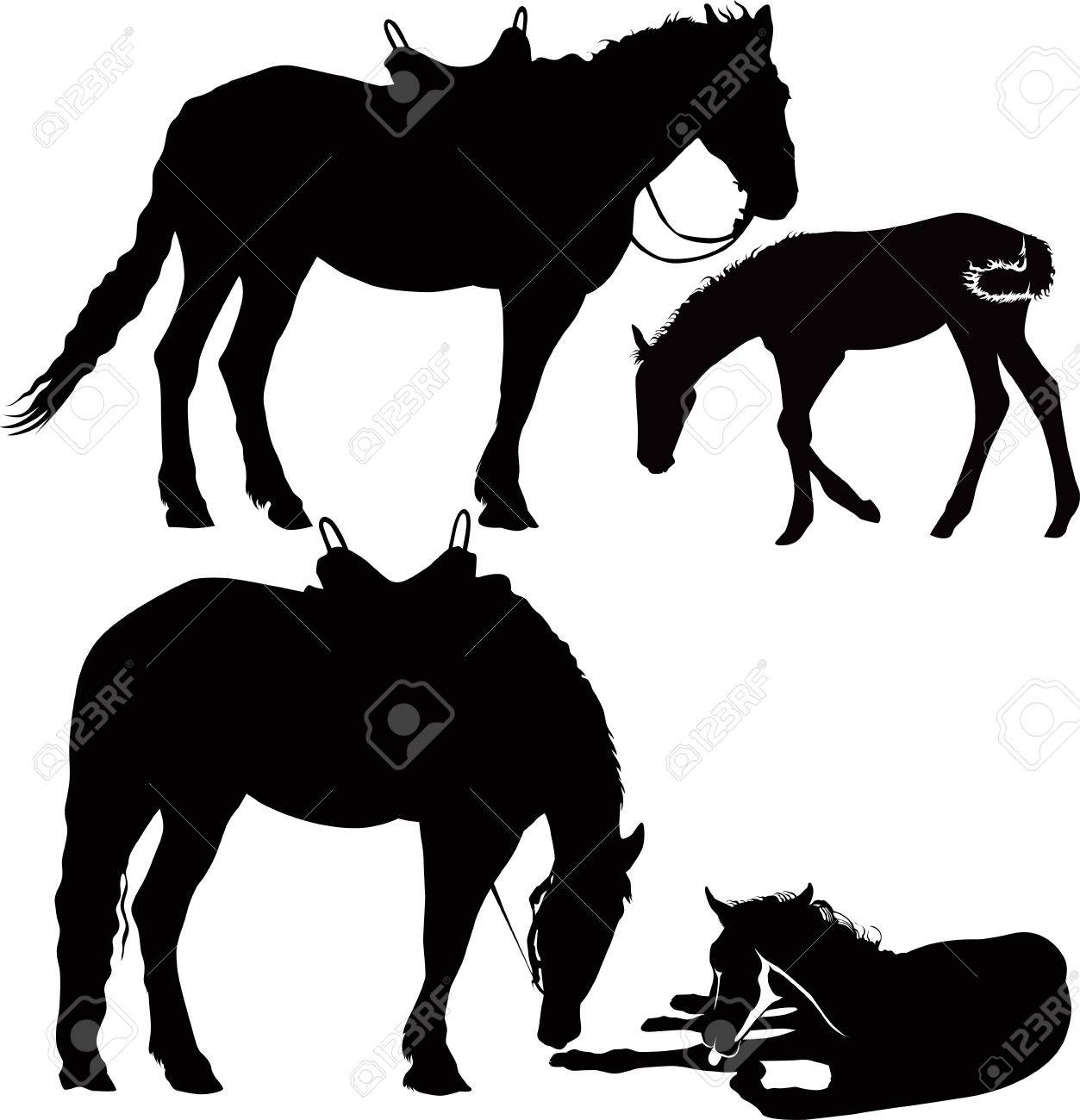 horses animals equestrian sport isolated on white background Stock Vector - 16573065
