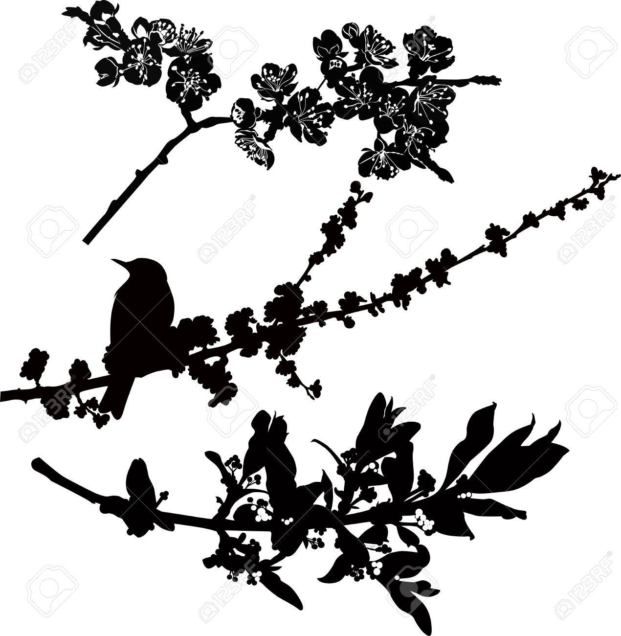 tree branches in flower bird starling Stock Vector - 19338971