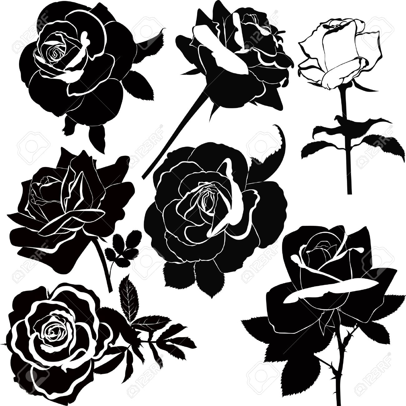 vector collection of rose flowers isolated Stock Vector - 20463806
