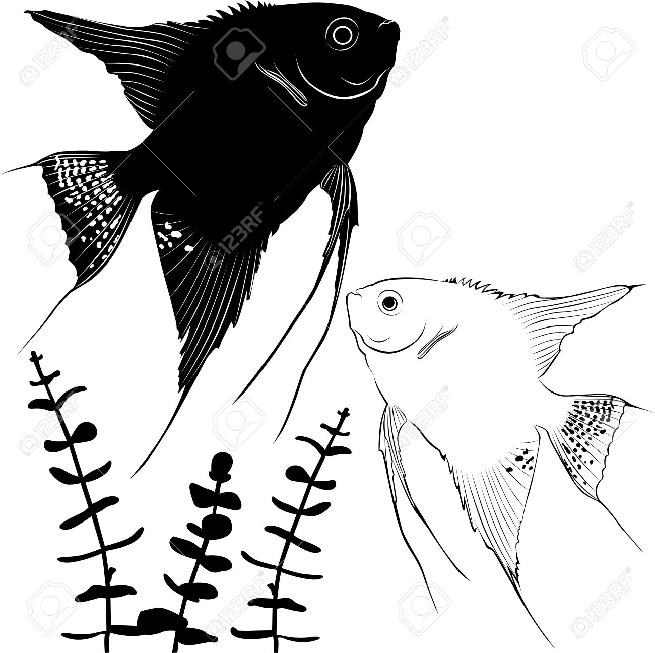 1 226 angelfish cliparts stock vector and royalty free angelfish