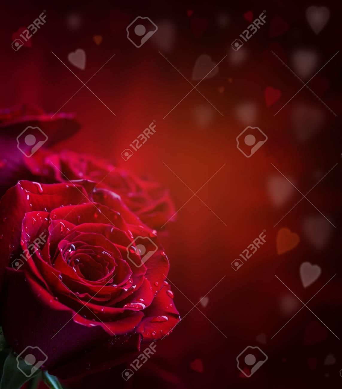 Rose Rote Rosen Blumenstrauss Aus Roten Rosen Mehrere Rosen Auf