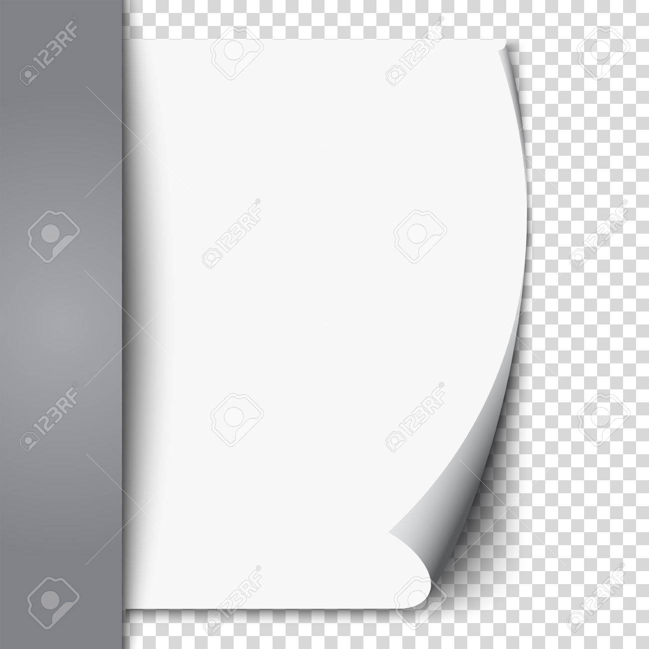 New White Page Curl On Blank Sheet Isolated Paper. Realistic Empty Folded  Page. Transparent  Blank Sheet Of Paper With Lines