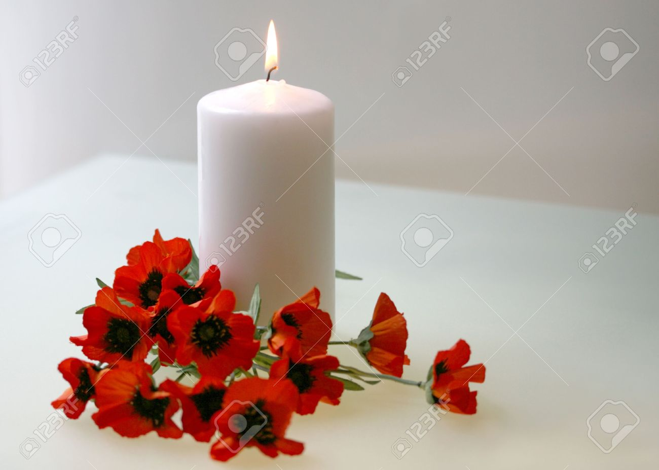 intentionally soft flanders poppies with candle to commemorate