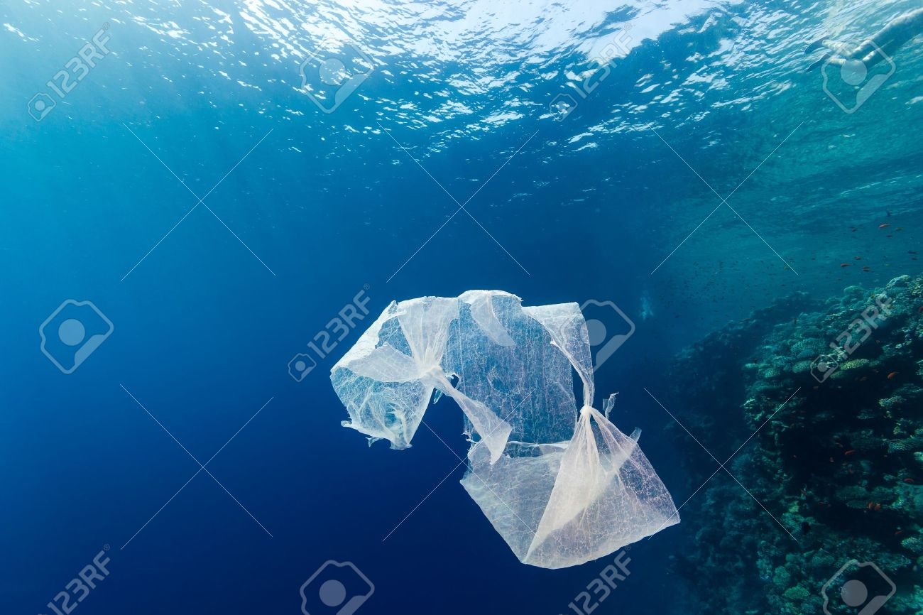 A discarded plastic bag floats in open ocean near a tropical coral reef Stock Photo - 16696495