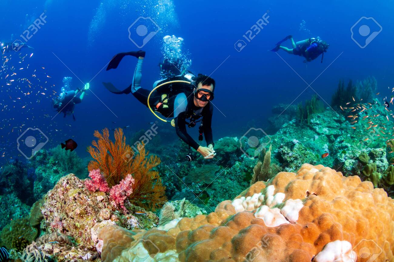 SCUBA divers on a colorful tropical coral reef - 129498211