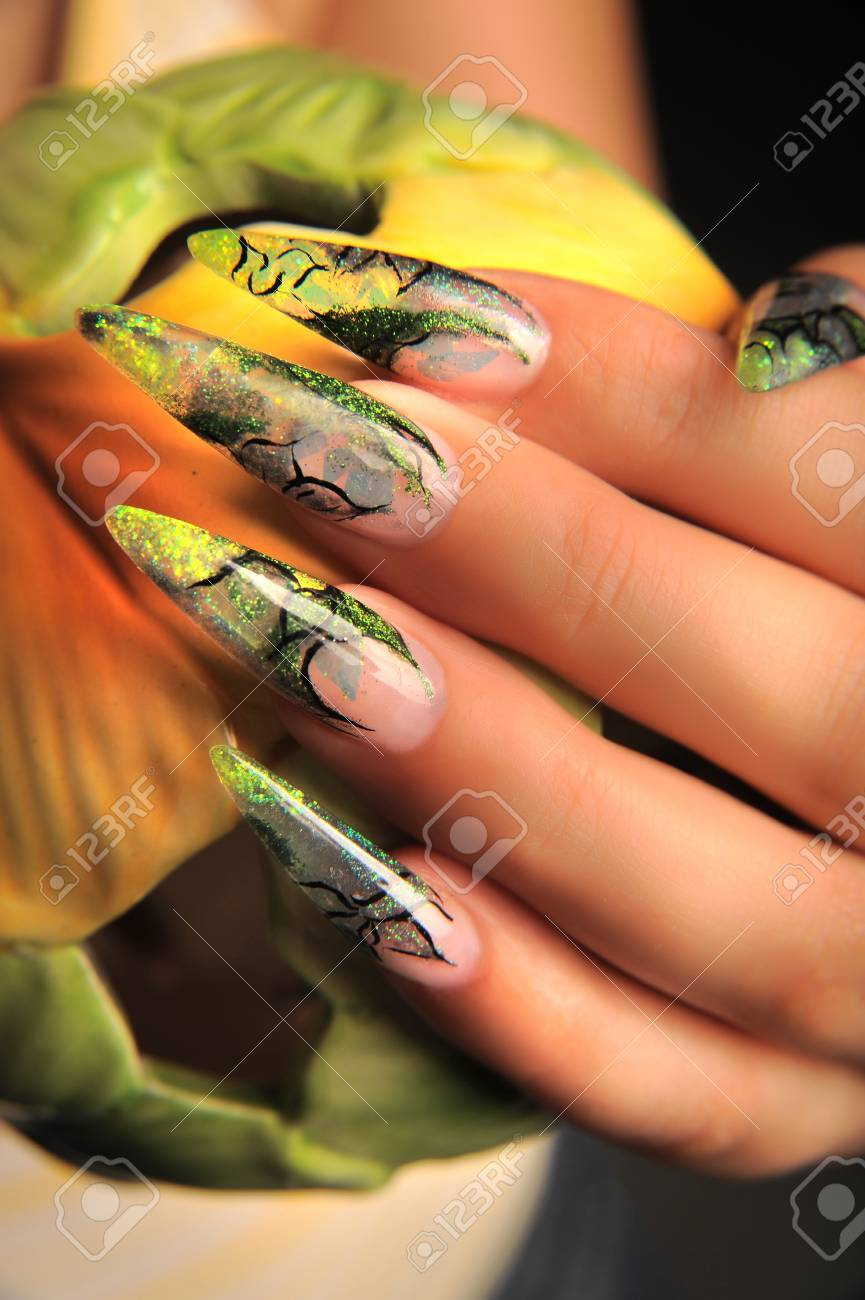 manicures beautiful pattern on nails Stock Photo - 16763909