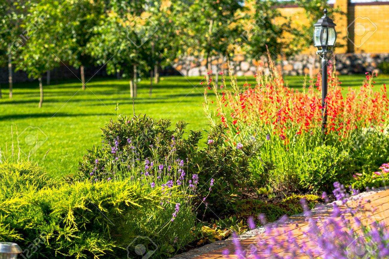 Beautiful Backyard Landscape Design. View Of Colorful Trees And ...