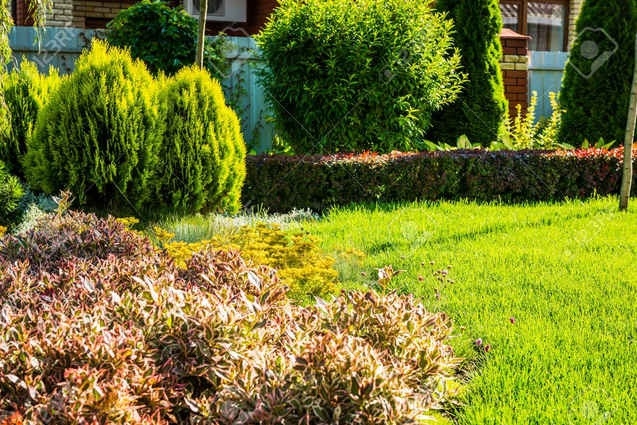 Beautiful landscaping with beautiful plants and flowers stock photo beautiful landscaping with beautiful plants and flowers stock photo 78911303 izmirmasajfo