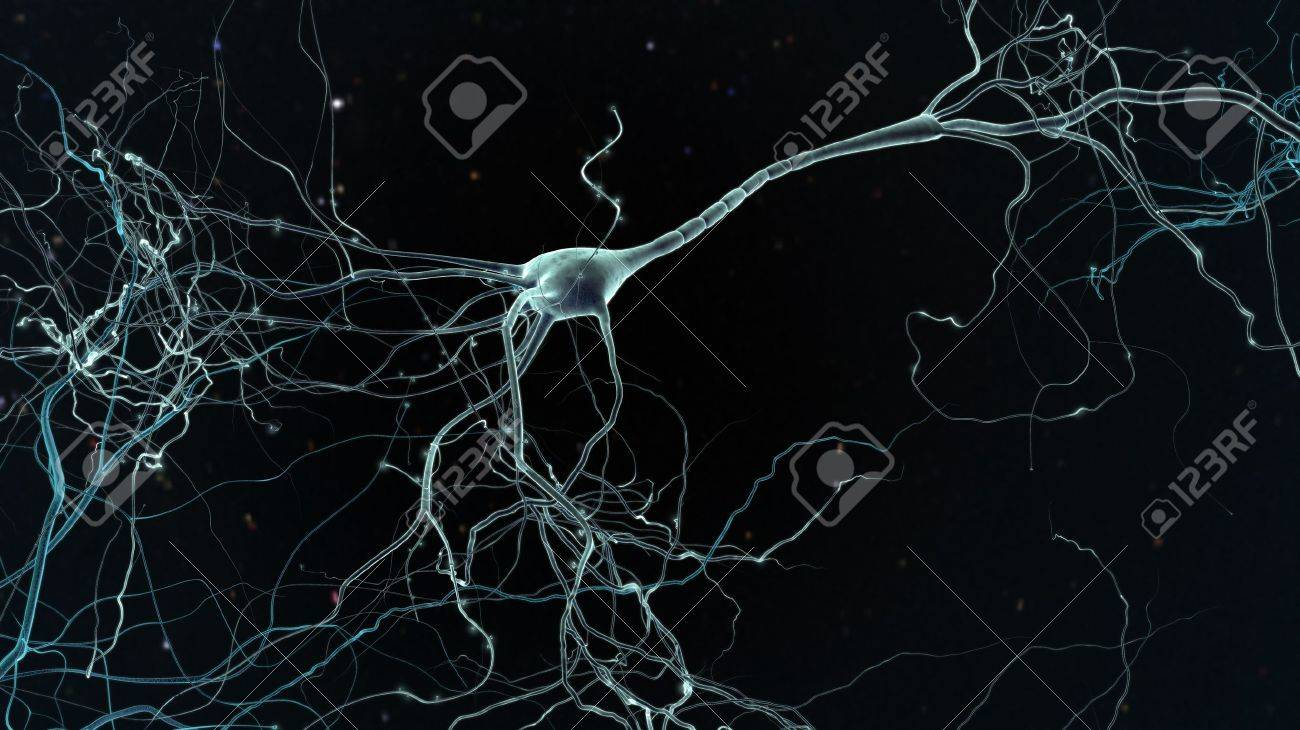 Neuron space, concept of neurons and nervous system - 19012406