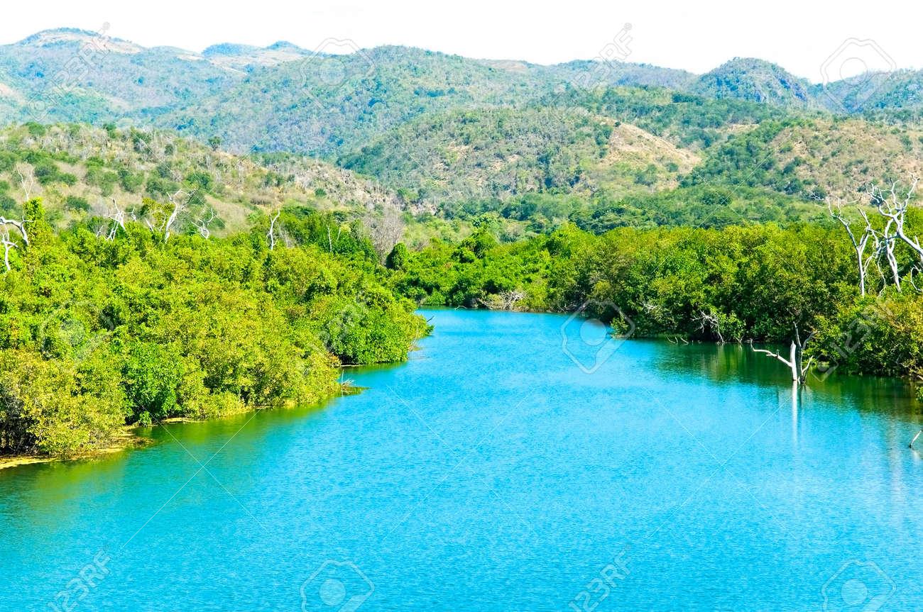 Caribbean Tropical Landscape Stock Photo   7359941