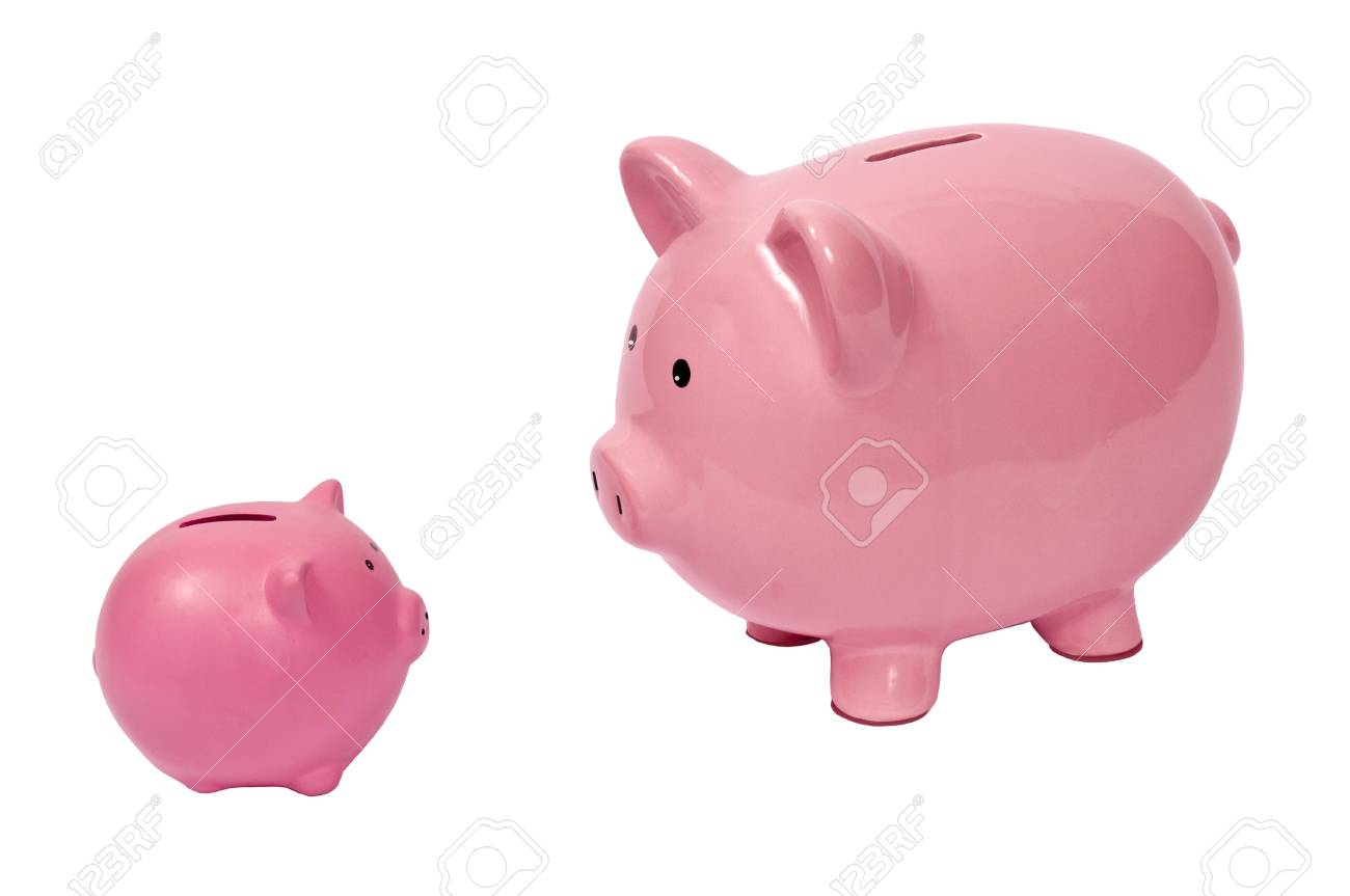 Big Pig Looking at Little Pig Stock Photo - 17109500