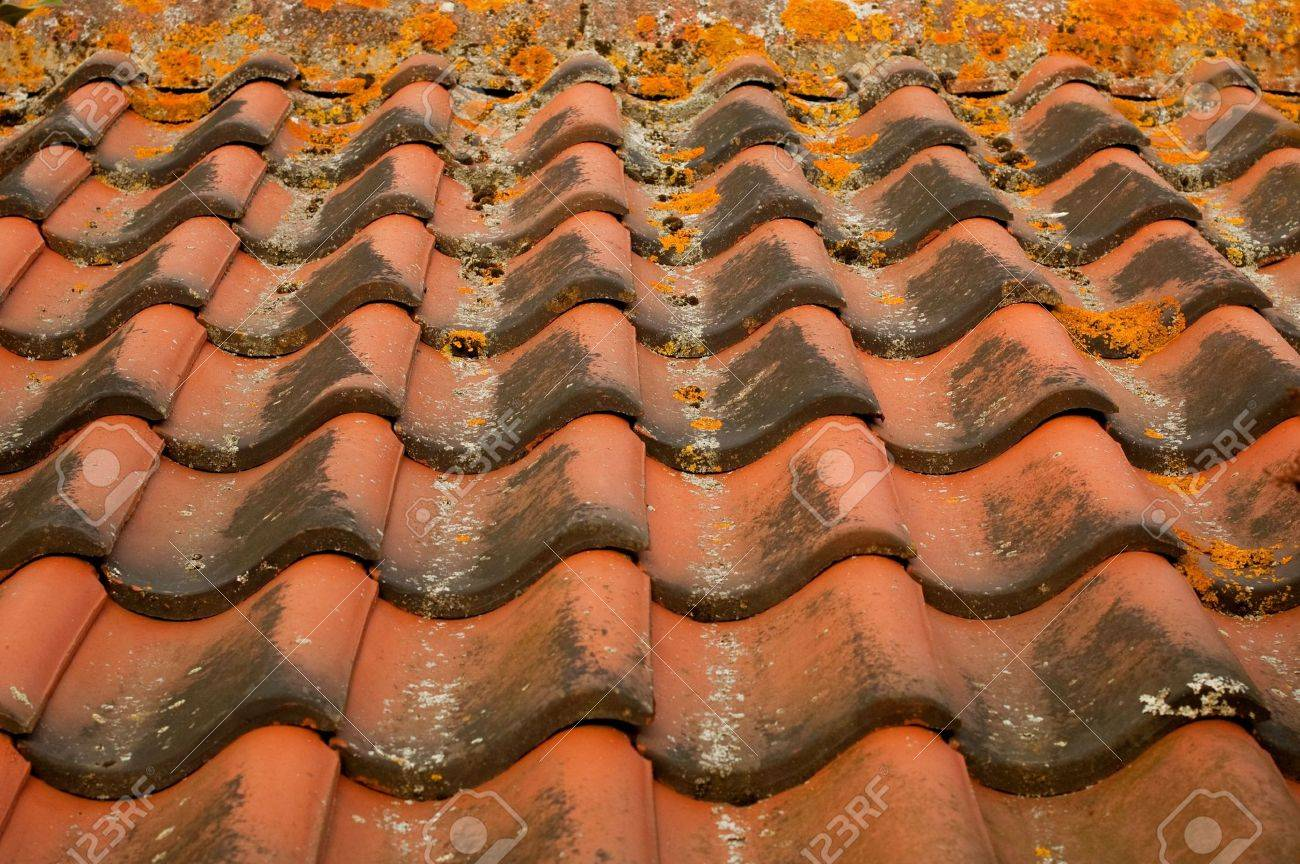 Background Of Interlocking Red Clay Roofing Tiles Stock Photo   5799879