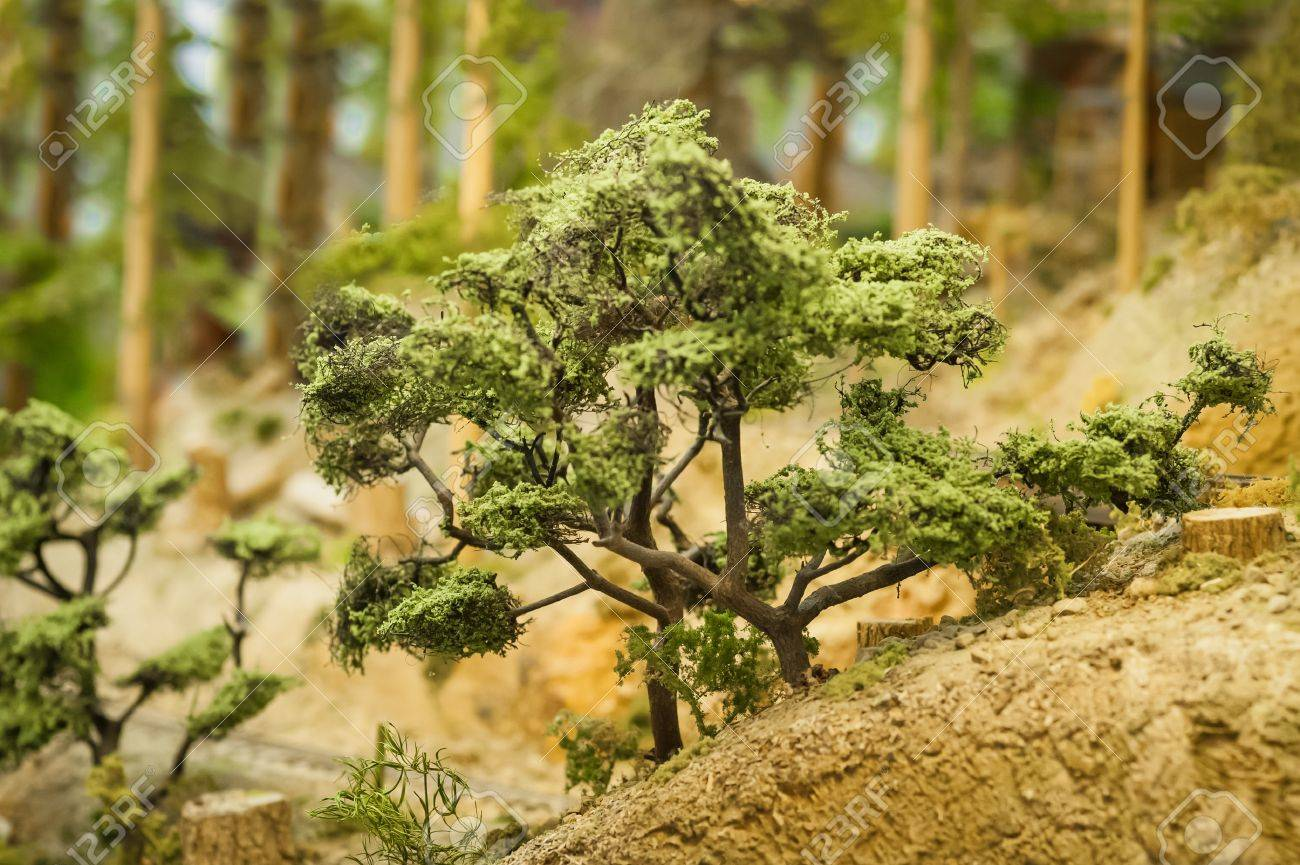 closeup of miniature model trees in a forest