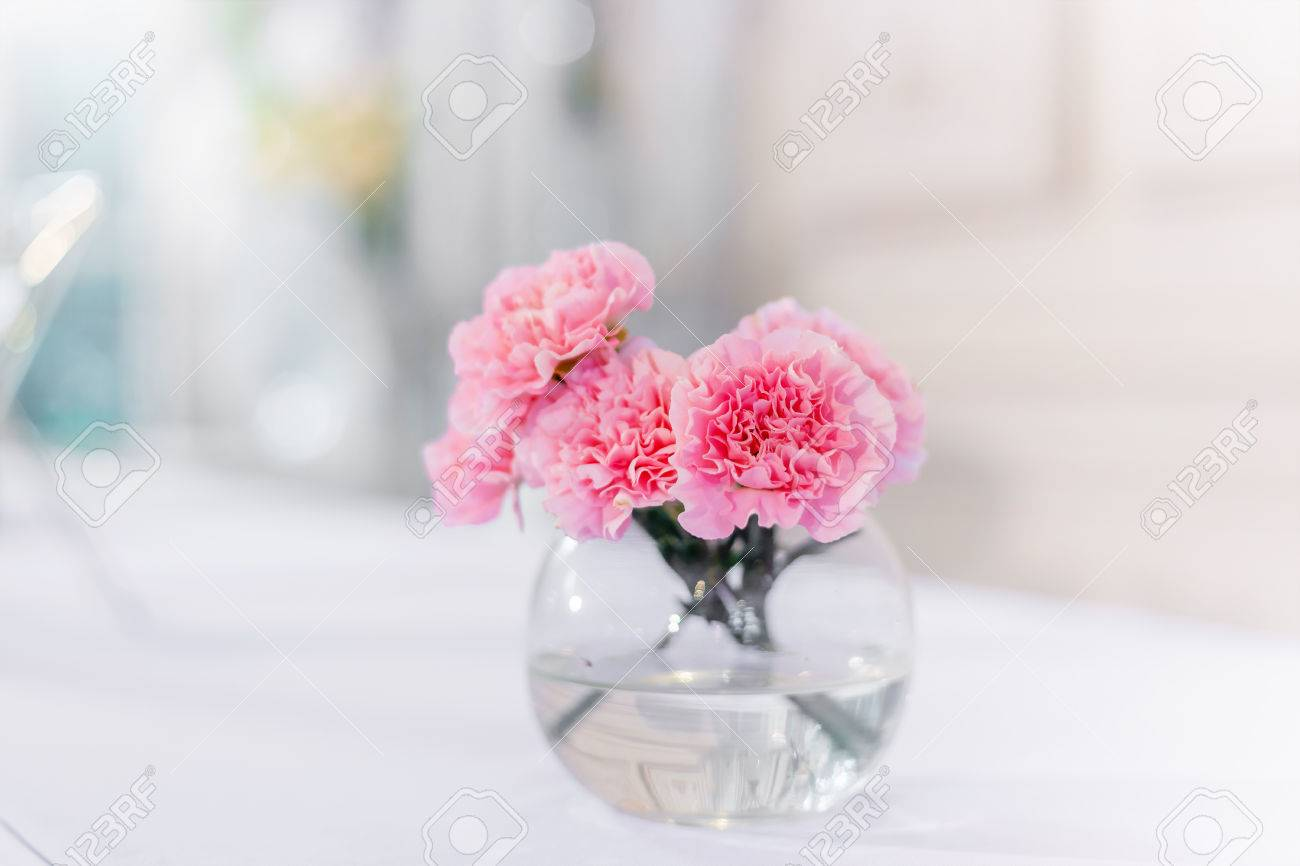 Pink Carnations Flower In The Glass Vase On White Table Background