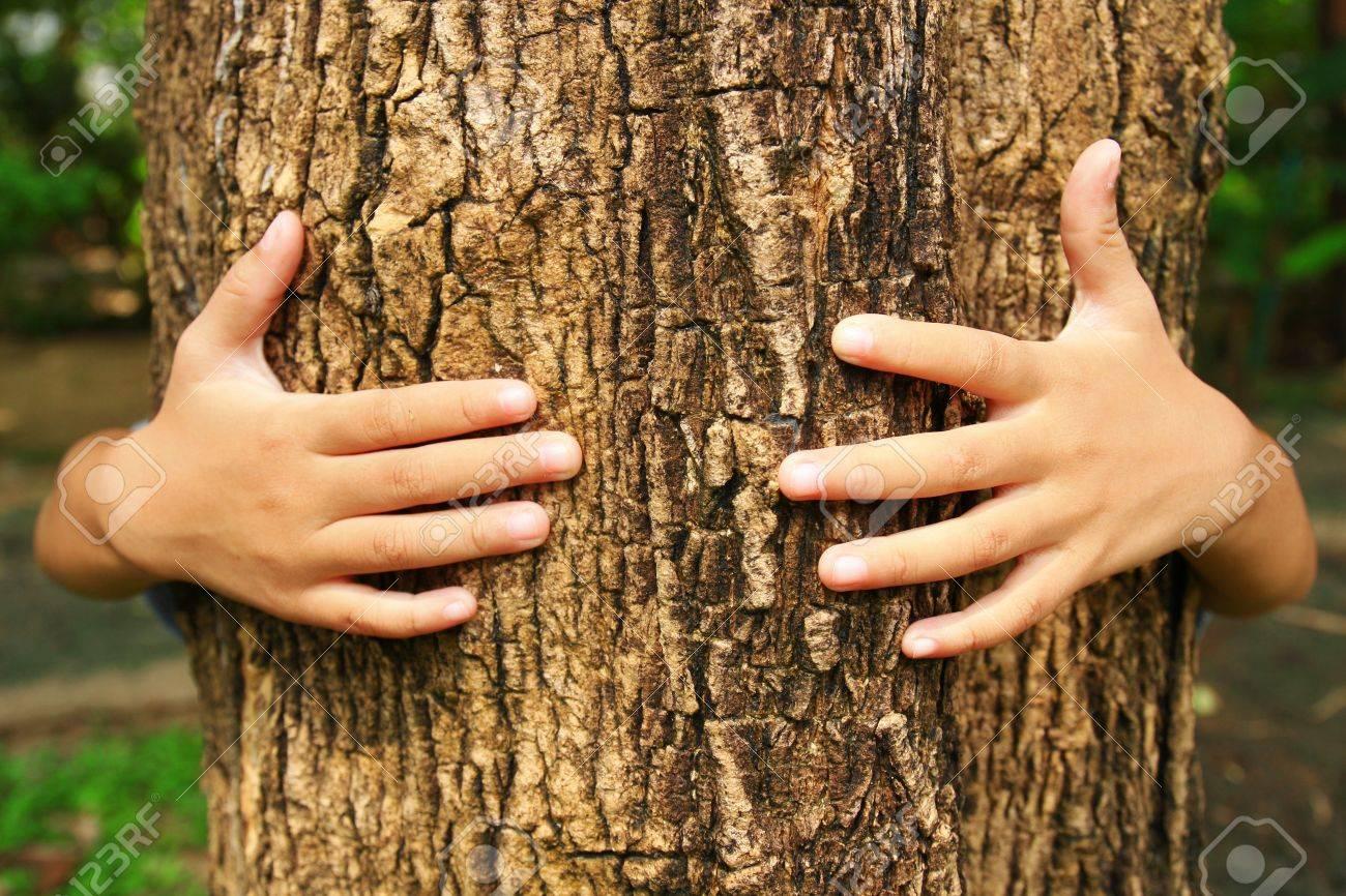 Abrazo Del árbol Fotos Retratos Imágenes Y Fotografía De Archivo Libres De Derecho Image 16499623