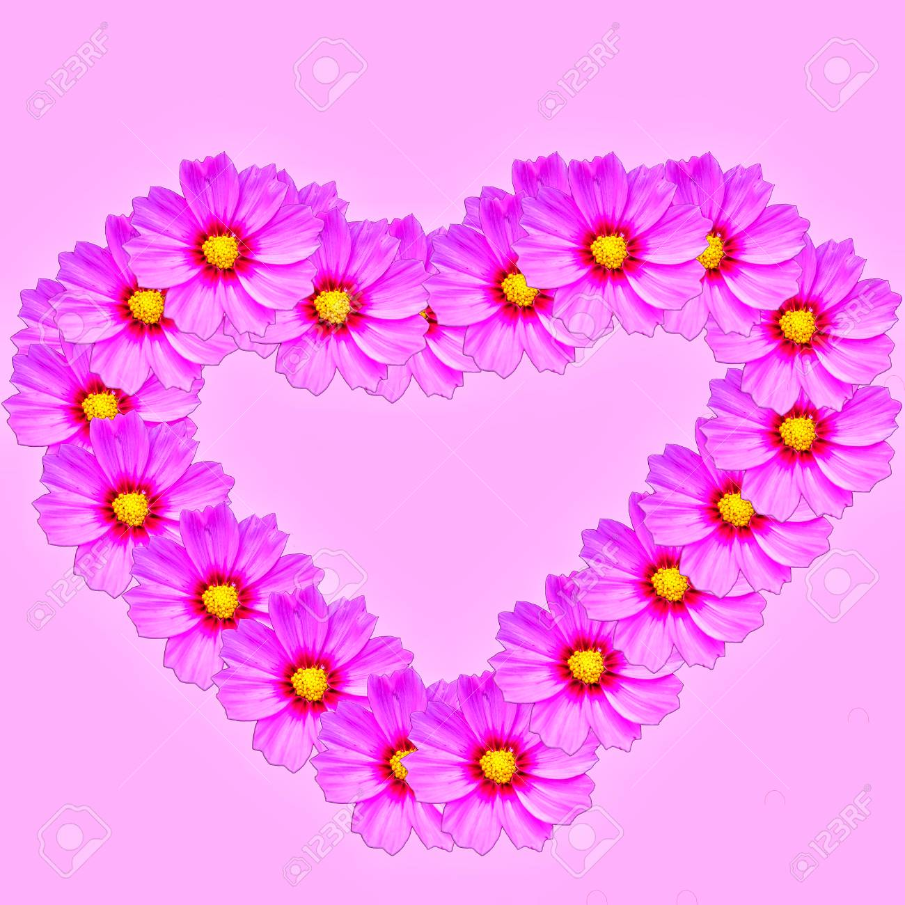 Concept Ideas Heart Shaped Made Of Pink Flowers For Textures Stock