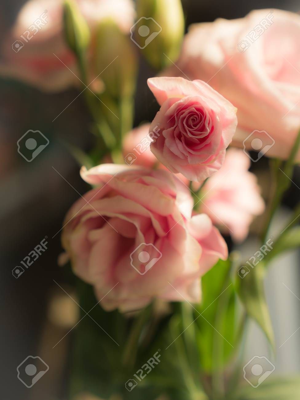 The bouquet of pink lisianthus flower in the garden stock photo stock photo the bouquet of pink lisianthus flower in the garden mightylinksfo