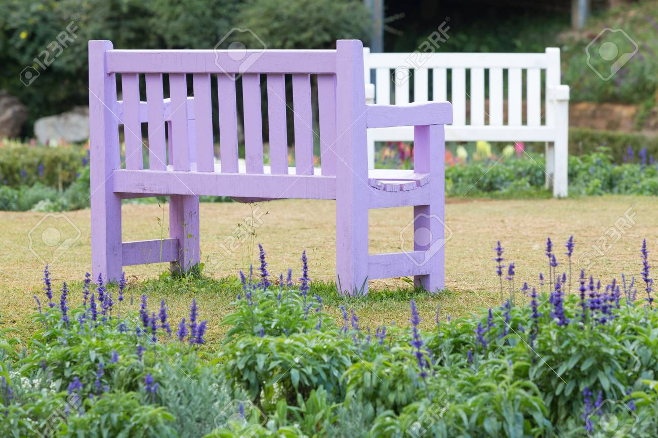 Stupendous Purple Wooden Bench In A Garden With Grass Lawn And Lavender Ncnpc Chair Design For Home Ncnpcorg