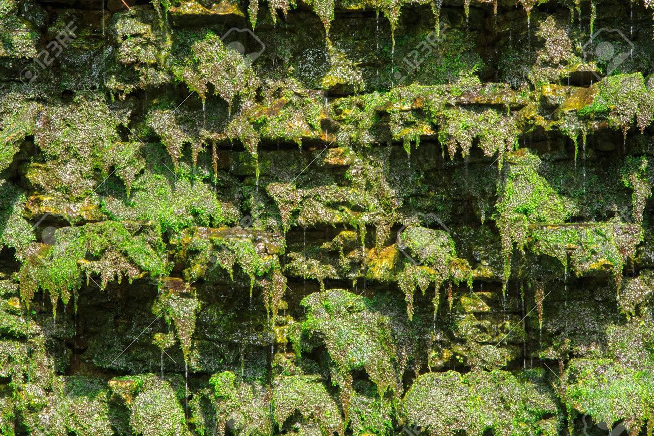 Pequeno Jardin Vertical Artificial Con Cascada En La Pared De Piedra