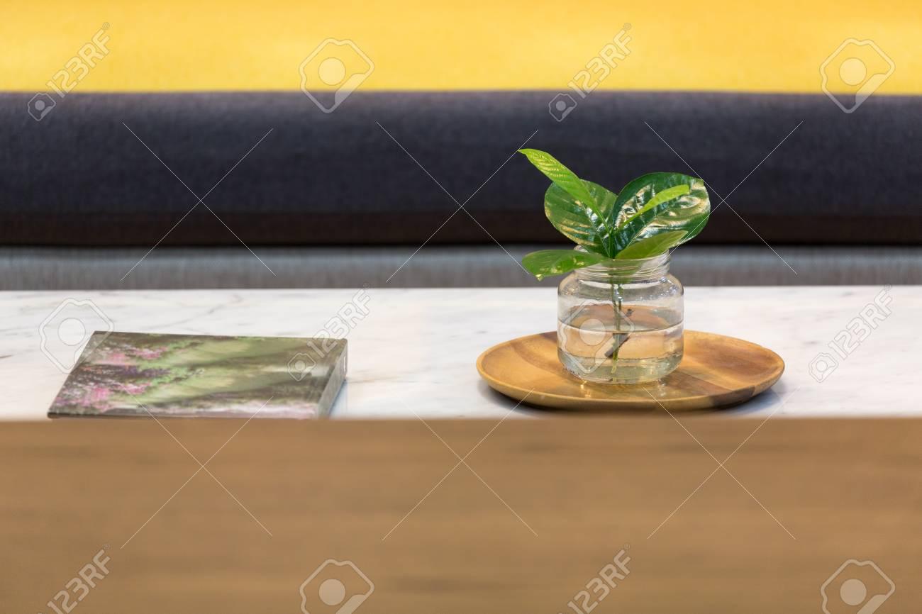 Petite plante verte décorée sur une table basse en marbre dans un salon  jaune.