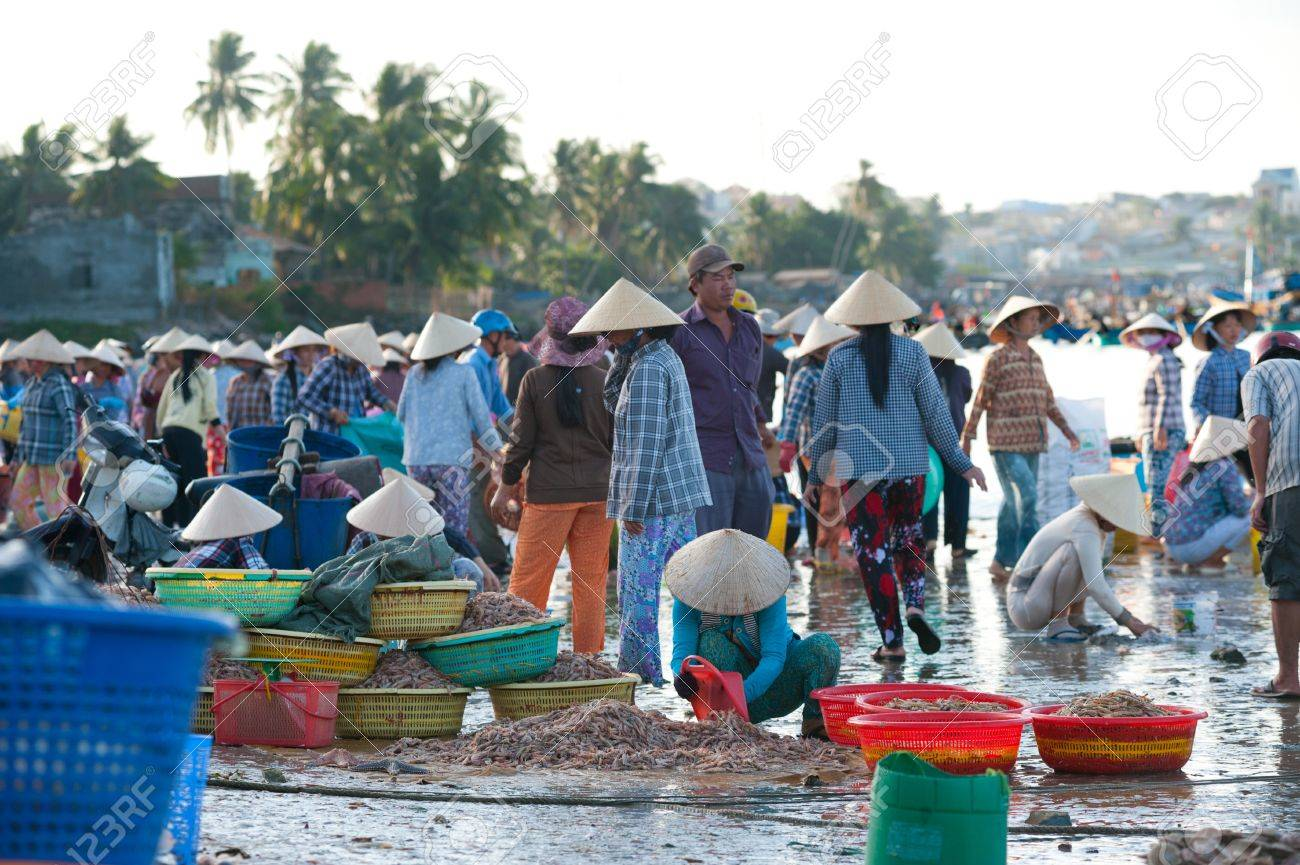 MUI NE, VIETNAM - FEBR 27  Mui Ne is a popular tourist attraction in Vietnam  A lot of fishers sort out their catch on the shore and sell fish to dealers, Feb 27, 2013, Mui Ne, Phan Thiet, Vietnam  Stock Photo - 18723977