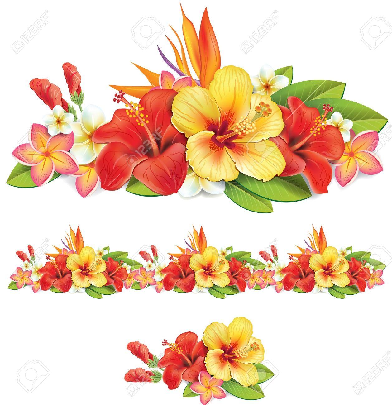 Hibiscus flower clipart image hibiscus flower - Red Hibiscus Flower Garland Of Of Tropical Flowers Illustration