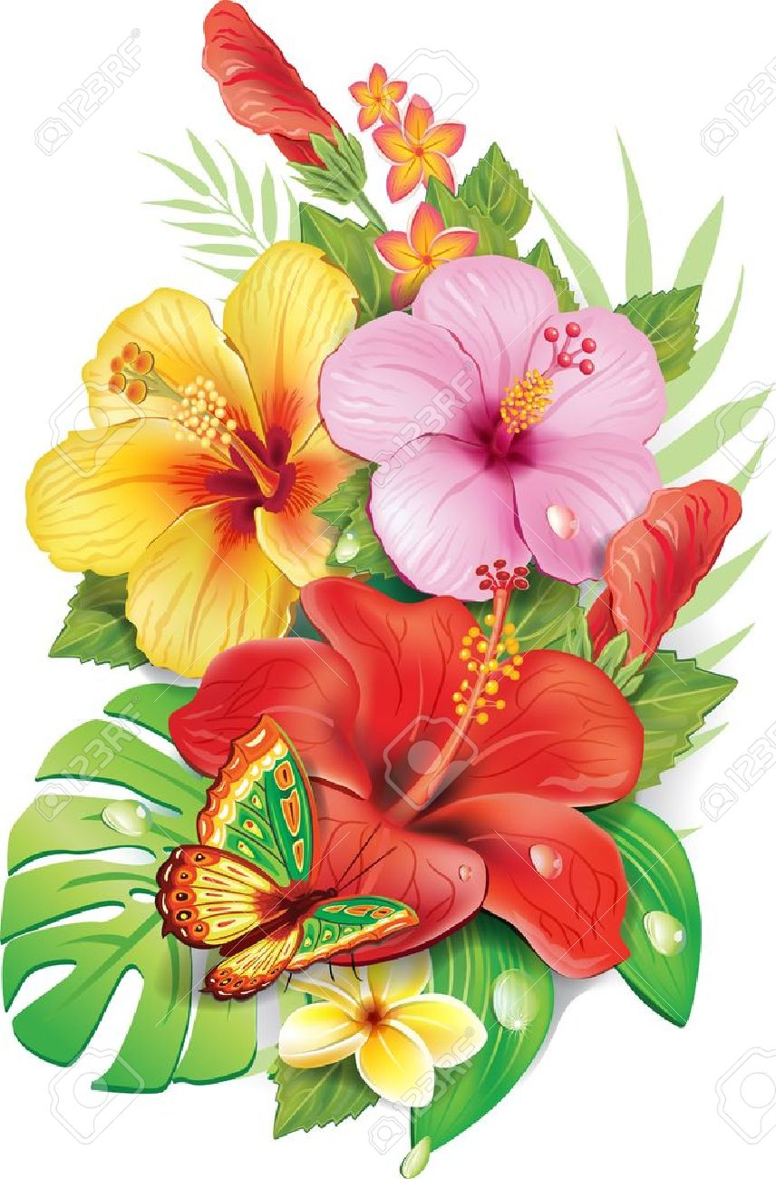 Bouquet of tropical flowers royalty free cliparts vectors and bouquet of tropical flowers stock vector 21214108 izmirmasajfo Gallery