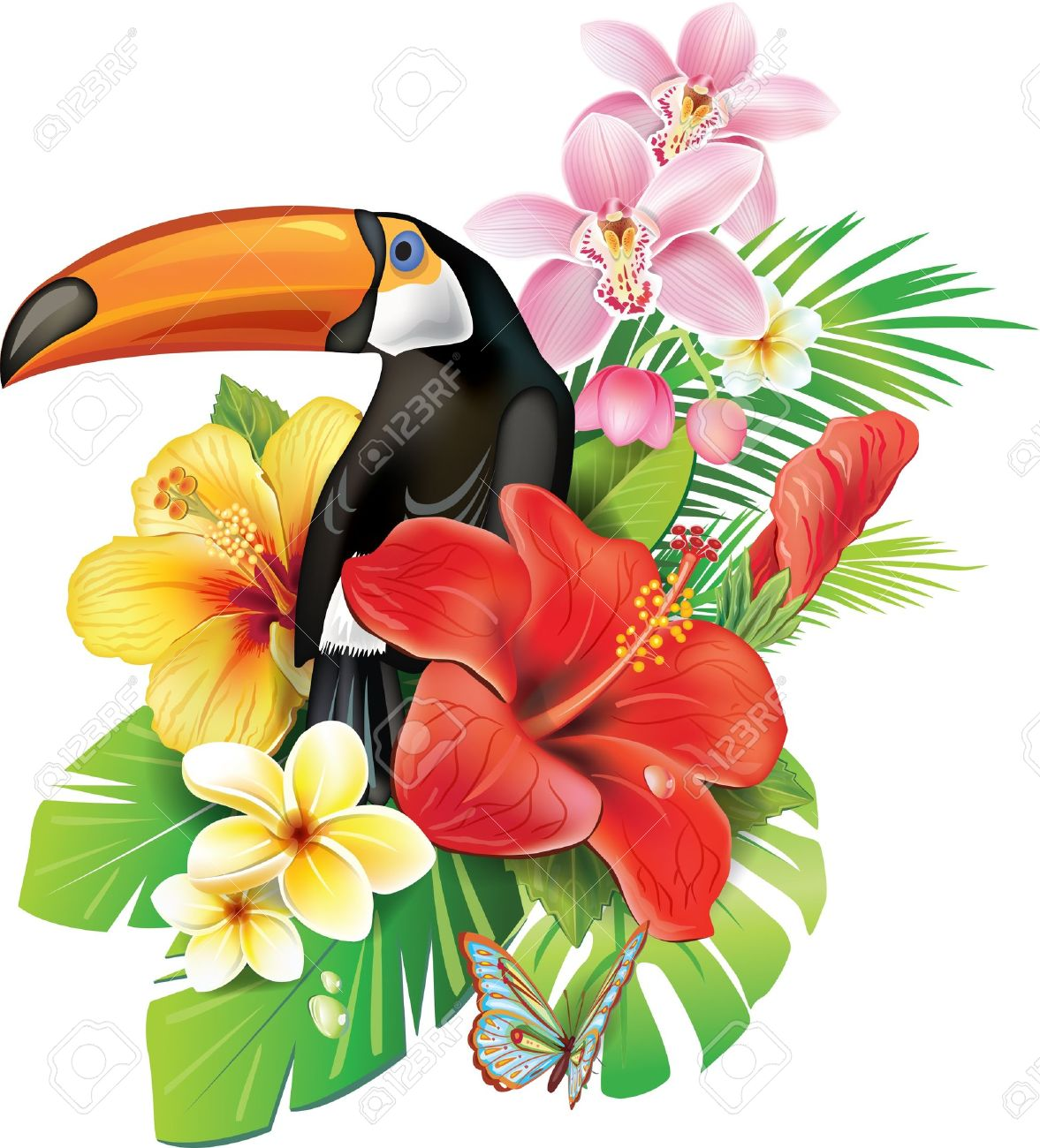 Tropical flowers and toucan - 21214109