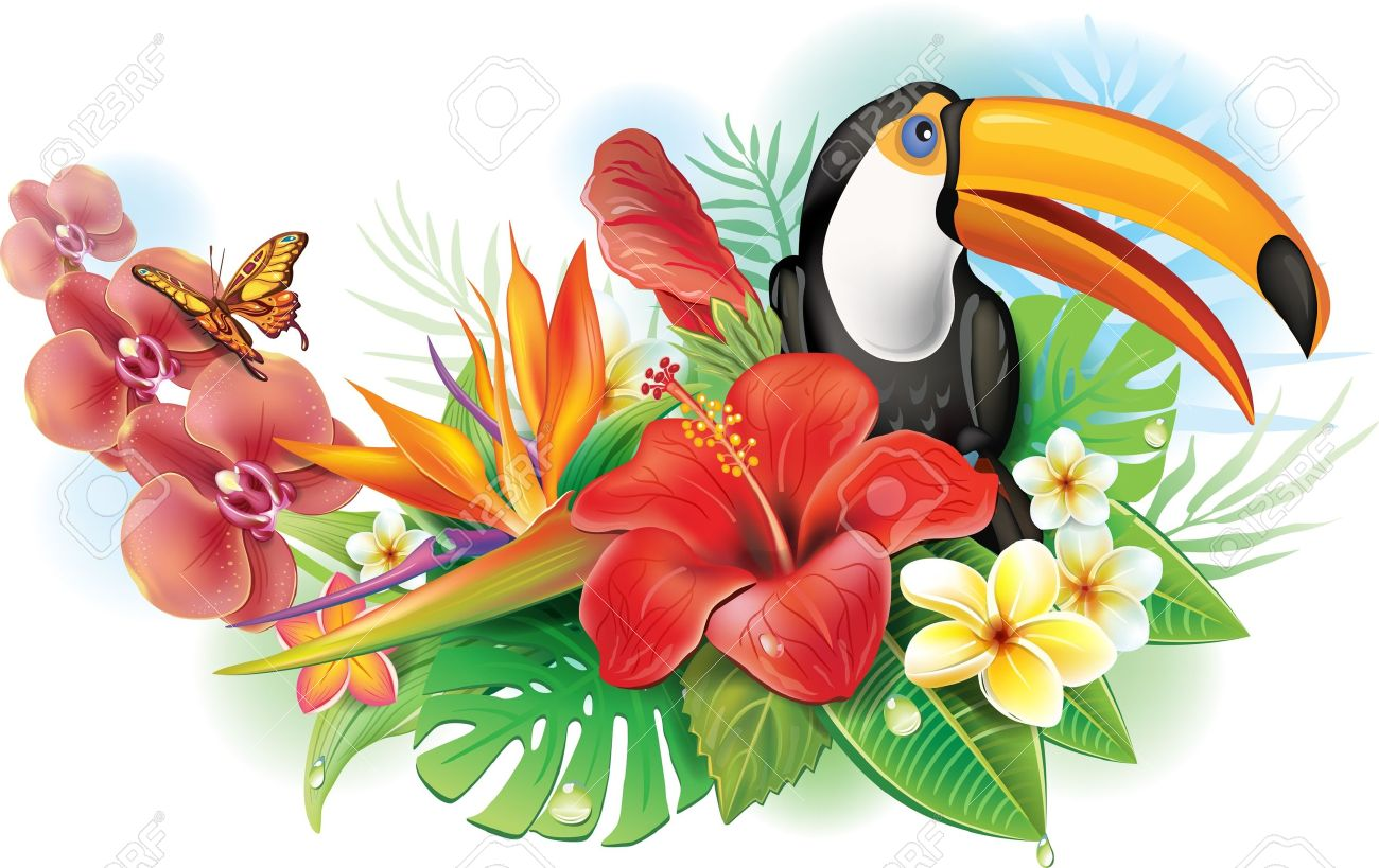 Red hibiscus, toucan and tropical flowers - 21214111