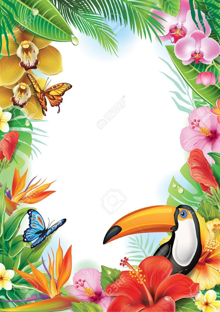 Frame with tropical flowers, butterflies and toucan - 21214112