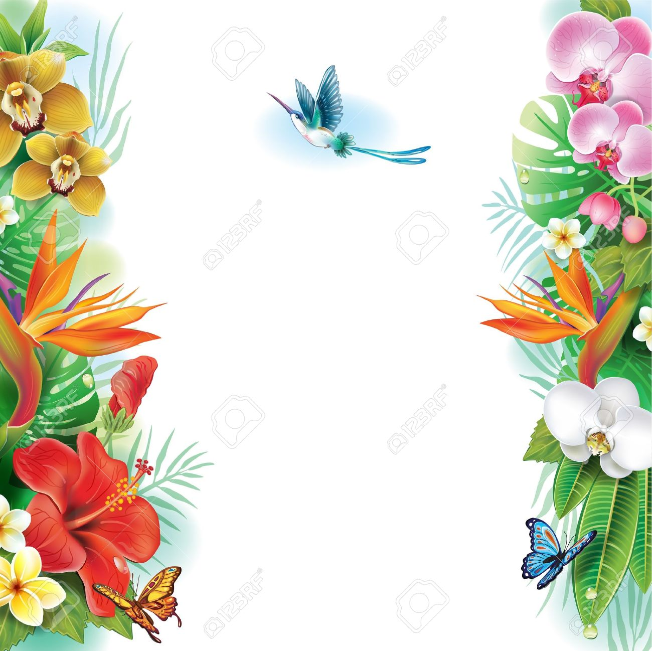 Border From Tropical Flowers And Leaves Royalty Free Cliparts ...