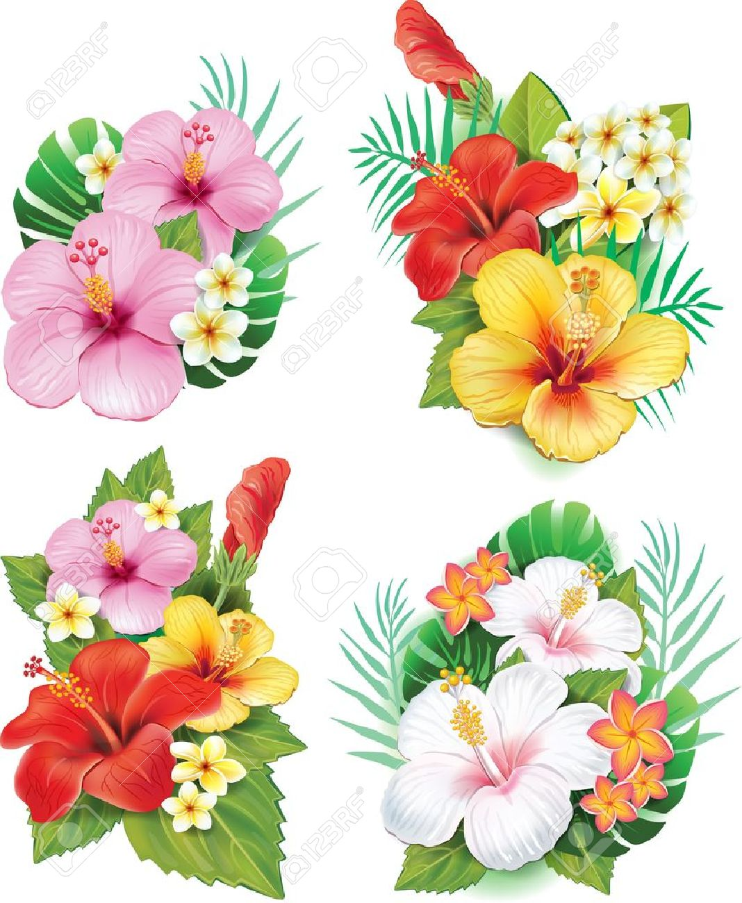 Arrangement from hibiscus flowers - 21670794