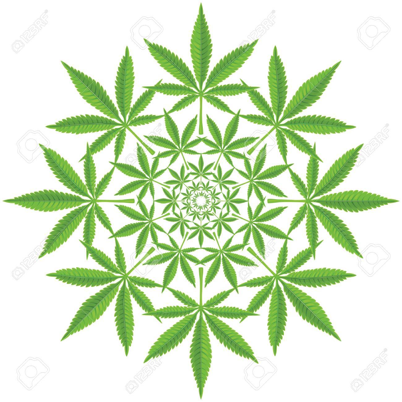 Round pattern from cannabis leaf - 60981852