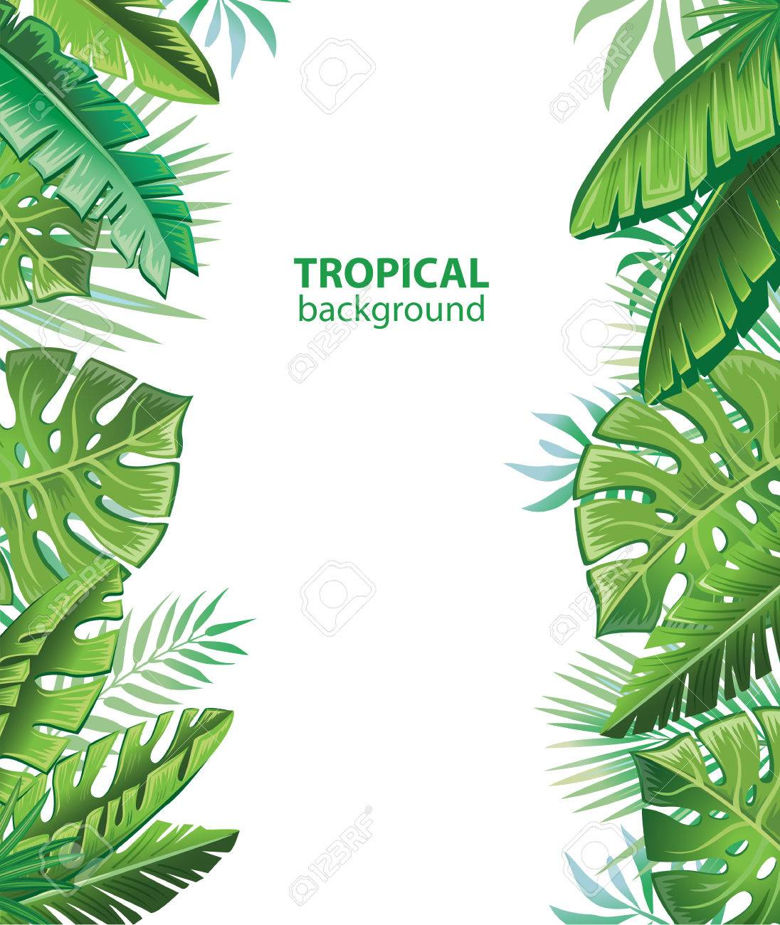 Tropical leaves and plants - 78257677