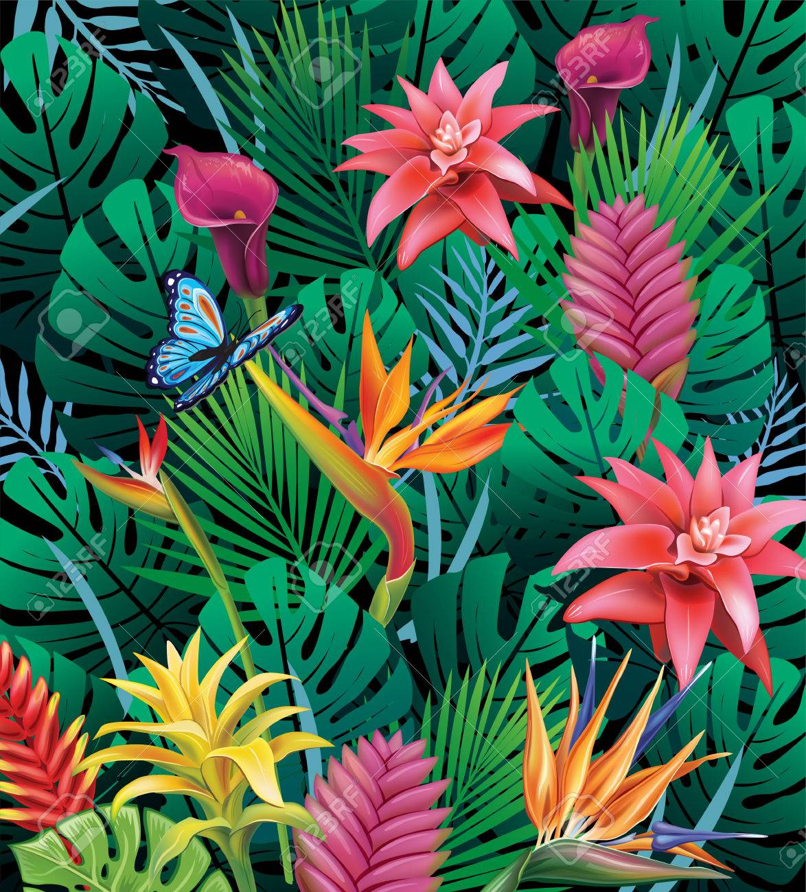 Background With Exotic Tropical Flowers Royalty Free Cliparts