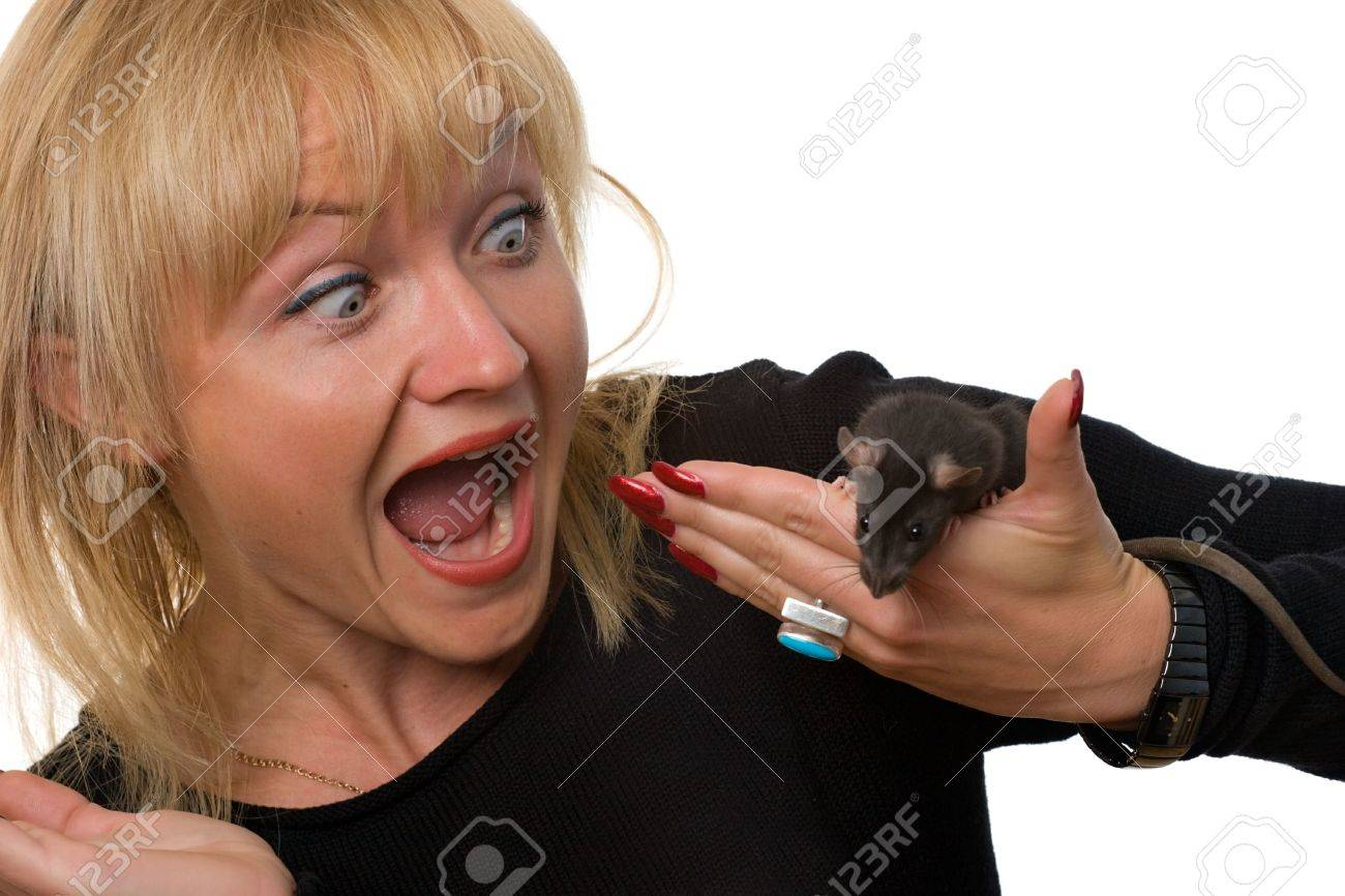 scared woman crying with horror holding little rat in her hand, isolated on white Stock Photo - 1894823
