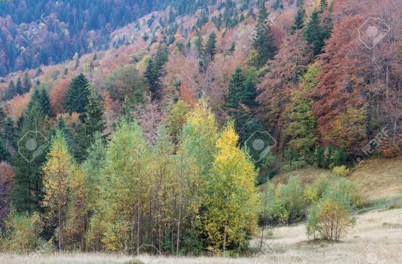 Autumn mountain valley view Stock Photo - 1941961