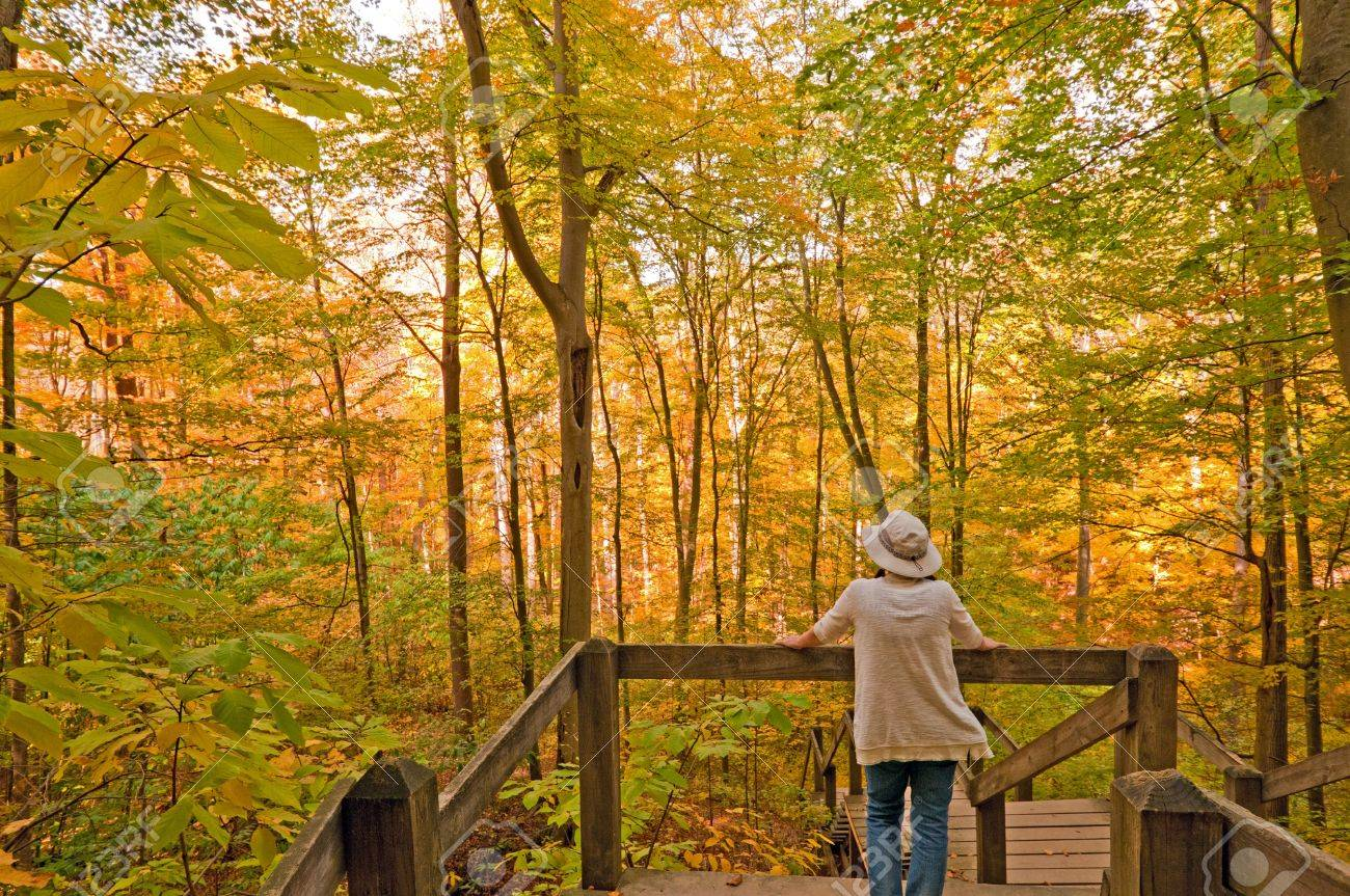 Person on Nature Trail in Brown Country State Park in Indiana in Fall Stock Photo - 17282120