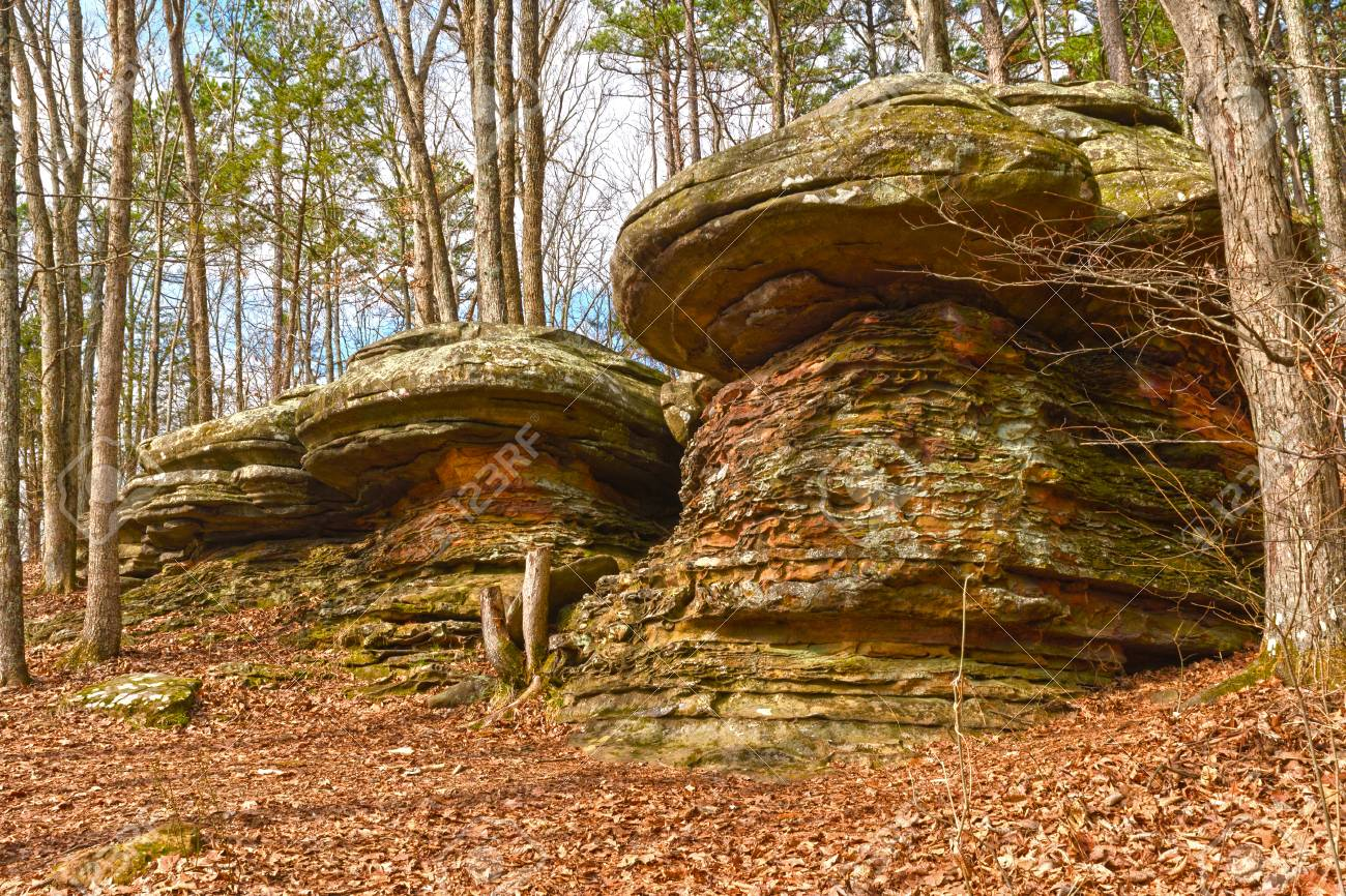 Colorful Rocks In The Forest In The Garden Of The Gods In Shawnee ...
