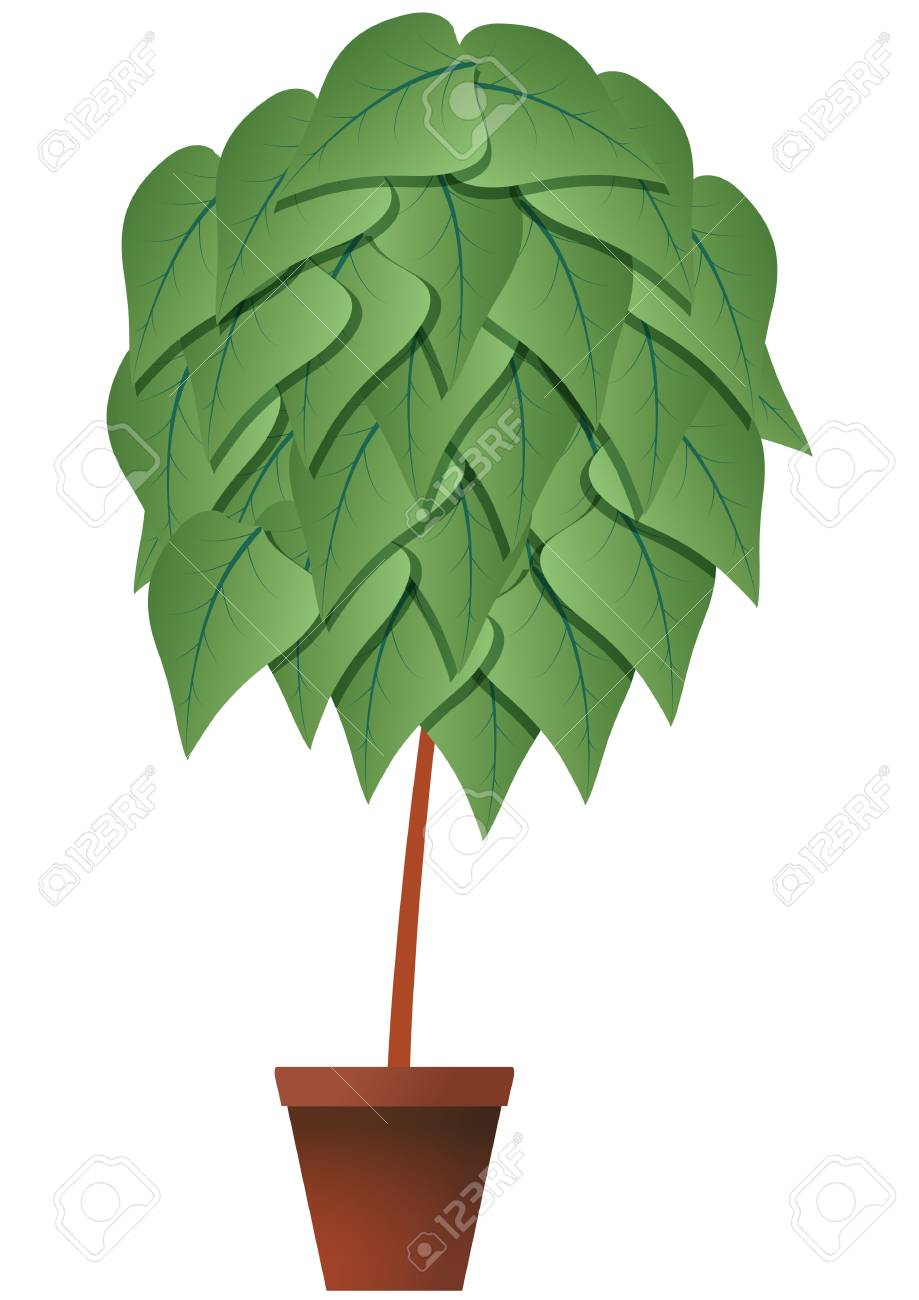 illustration of plant with brown pot Stock Vector - 14295855