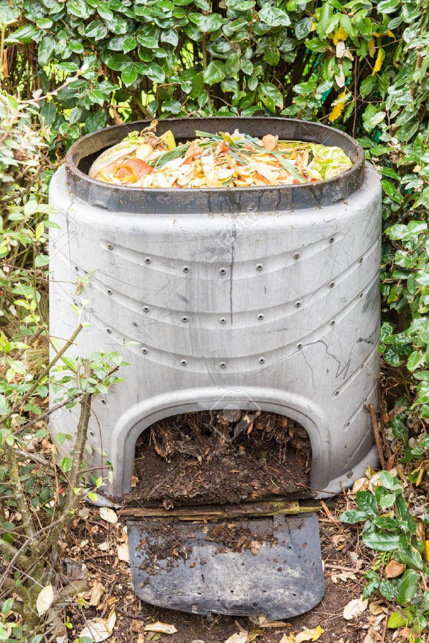Composting The Kitchen Waste In A Plastic Compost Bin Stock Photo ...