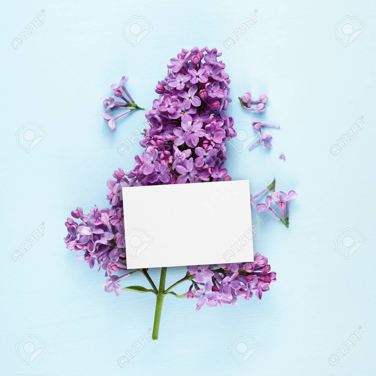 Birthday card and lilac flowers on blue background stock photo birthday card and lilac flowers on blue background stock photo 89582131 izmirmasajfo