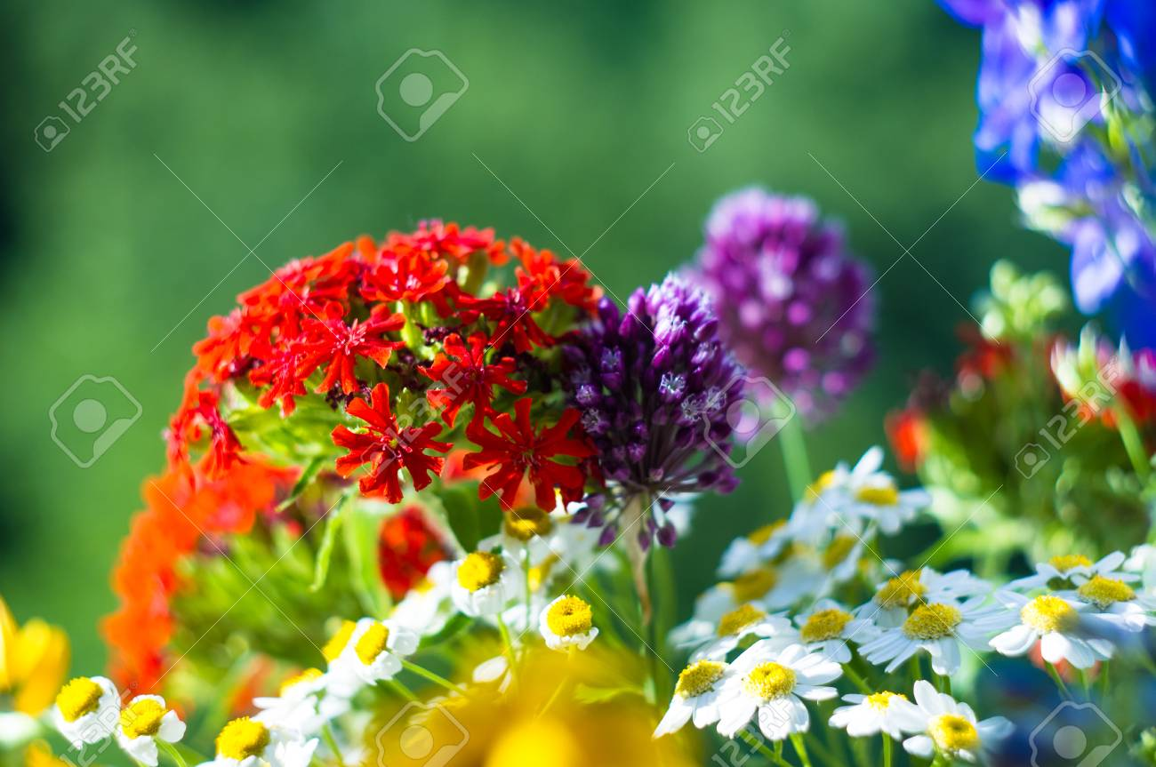 A colorful bouquet of bright spring flowers of various types a colorful bouquet of bright spring flowers of various types close up stock photo mightylinksfo