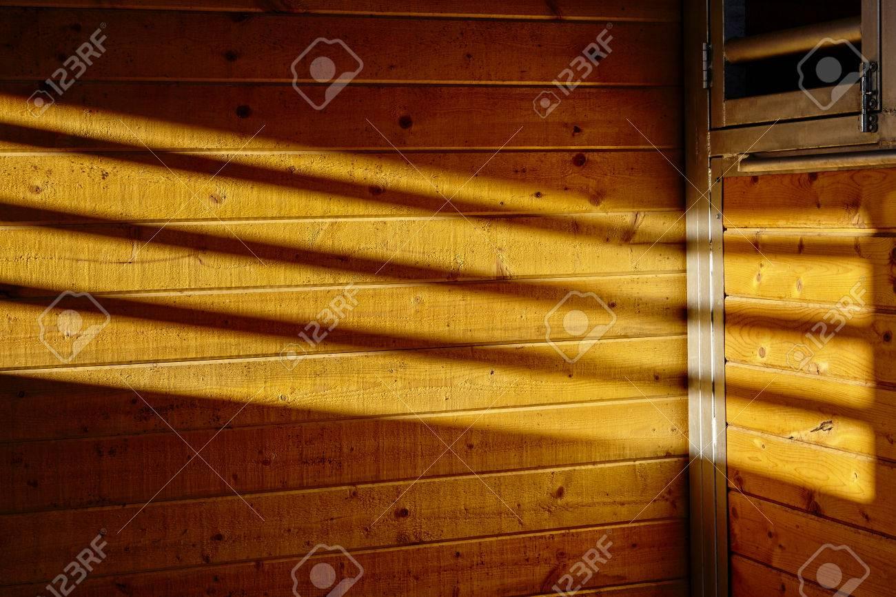 Assi di legno per pareti: plancia di legno spiaggia con crepe ...