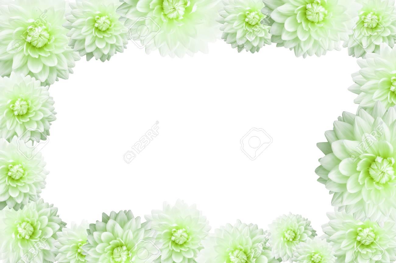 Der Rahmen Der Blume Grenze Auf Weißem Hintergrund Lizenzfreie Fotos ...