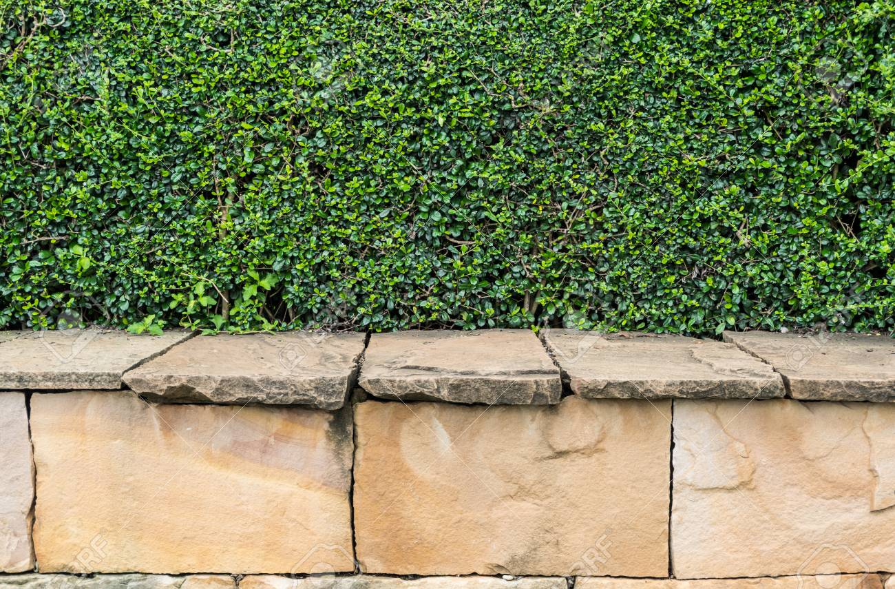 Brick Wall With Vertical Garden Decorative. Stock Photo, Picture And ...