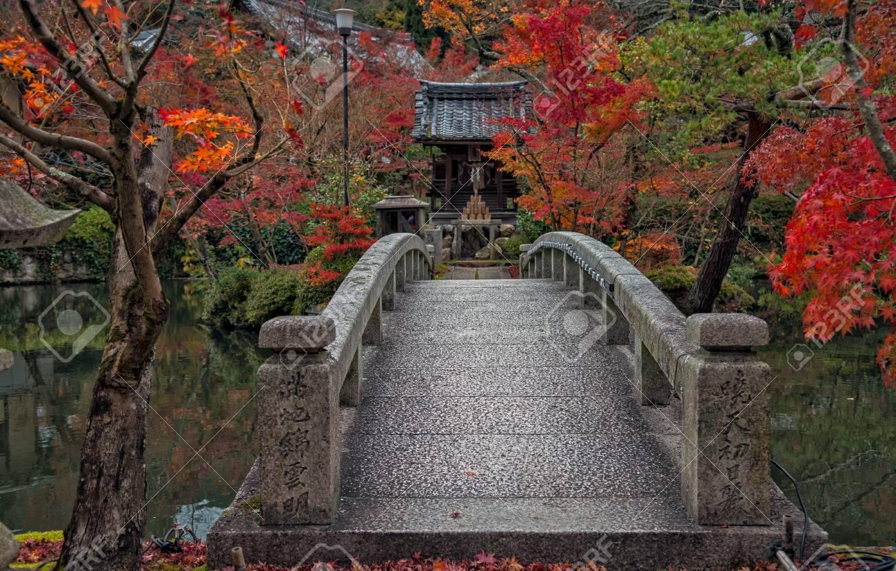永観寺、京都、日本の美しい秋カ...