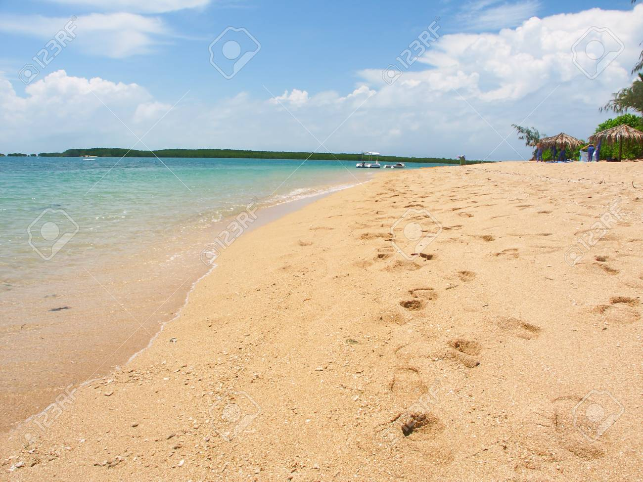 Tropical beach on the Low Isles in beautiful Queensland, Australia Stock Photo - 10359359